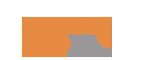 EssayJedii logo